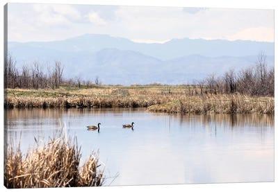 Geese On Mountain Lake Canvas Art Print