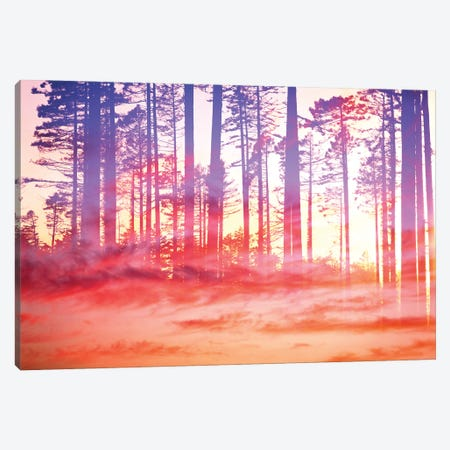 Artistic CVI - Dreamy Clouds Forest Canvas Print #TEM23} by Tenyo Marchev Canvas Art