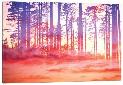 Artistic CVI - Dreamy Clouds Forest Canvas Art Print