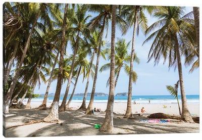 Beach, Costa Rica Canvas Art Print