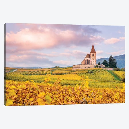 Vineyards, Alsace, France Canvas Print #TEO1037} by Matteo Colombo Canvas Art Print