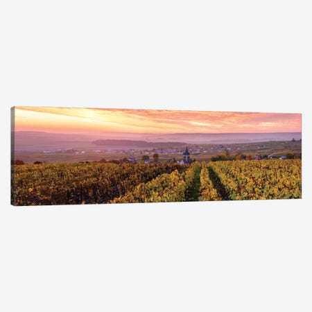 Sunrise On Champagne, France I Canvas Print #TEO1038} by Matteo Colombo Canvas Wall Art