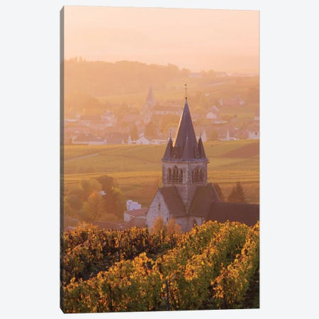 Sunrise On Champagne, France II Canvas Print #TEO1039} by Matteo Colombo Canvas Wall Art