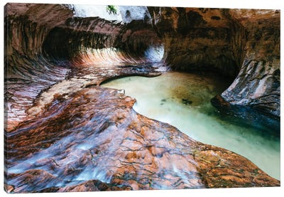 The Subway, Zion National Park, Utah, USA Canvas Print #TEO103