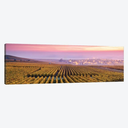 Champagne, France Canvas Print #TEO1044} by Matteo Colombo Canvas Wall Art