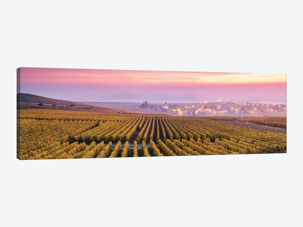 Champagne, France by Matteo Colombo 1-piece Art Print