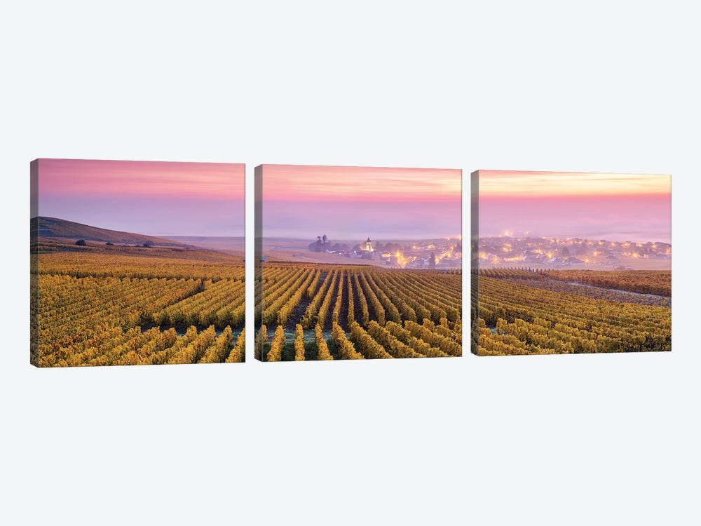 Champagne, France by Matteo Colombo 3-piece Canvas Art Print