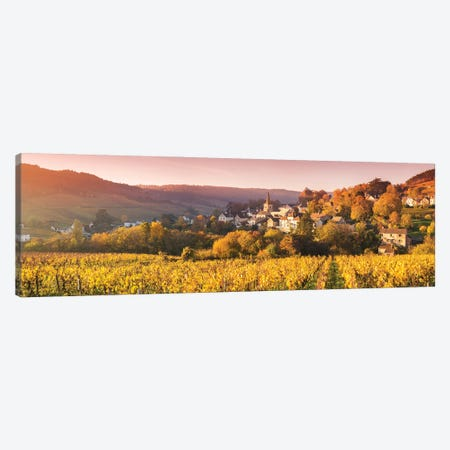 Vineyards In Burgundy, France Canvas Print #TEO1045} by Matteo Colombo Canvas Artwork