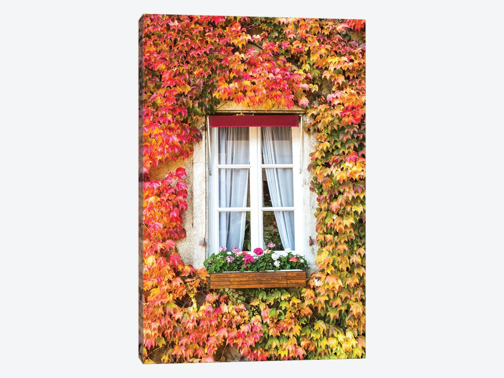 Window In Autumn II by Matteo Colombo 1-piece Canvas Art Print