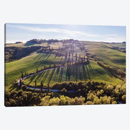 Winding Road, Tuscany Canvas Print #TEO1078} by Matteo Colombo Canvas Wall Art
