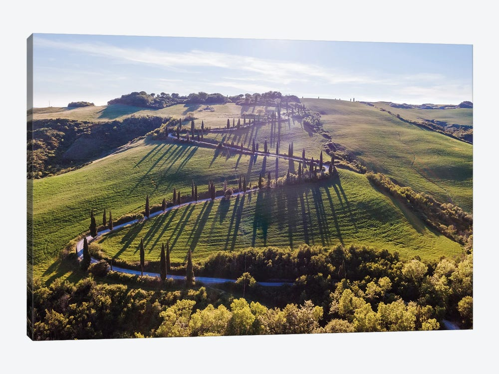 Winding Road, Tuscany by Matteo Colombo 1-piece Canvas Art