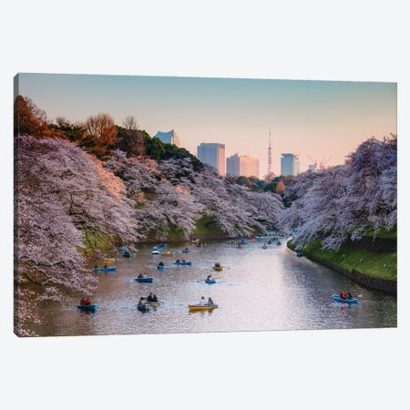 Cherry Blossoms In Tokyo I Canvas Print #TEO1100} by Matteo Colombo Canvas Wall Art
