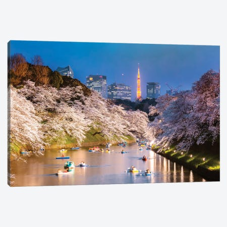 Cherry Blossoms In Tokyo II Canvas Print #TEO1101} by Matteo Colombo Canvas Wall Art