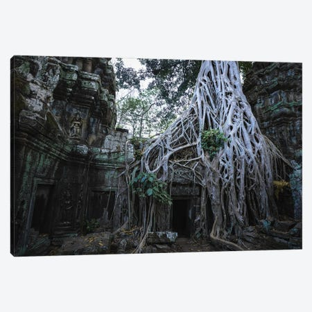 The Temple In The Jungle, Cambodia Canvas Print #TEO1156} by Matteo Colombo Canvas Wall Art