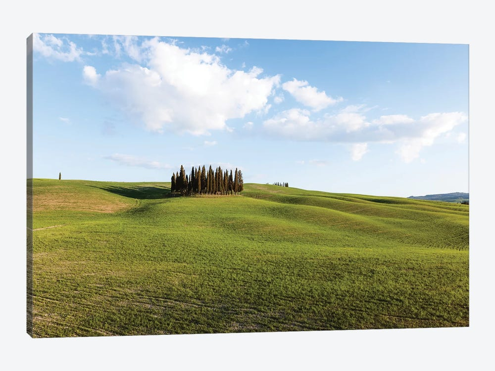 Springtime In Tuscany, Italy by Matteo Colombo 1-piece Canvas Wall Art