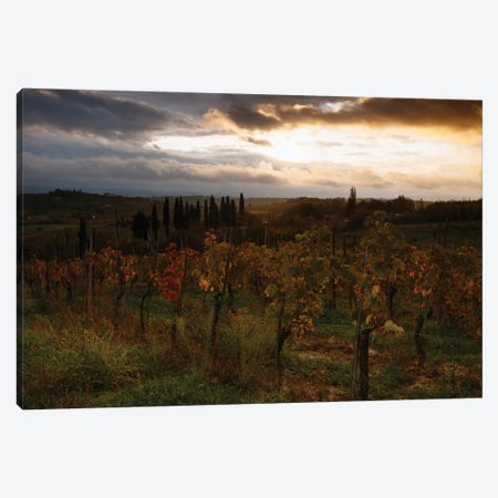 Autumn Sunrise, Tuscany, Italy Canvas Print #TEO16} by Matteo Colombo Canvas Art