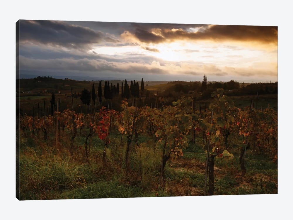 Autumn Sunrise, Tuscany, Italy by Matteo Colombo 1-piece Art Print