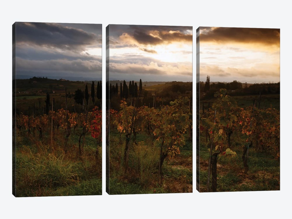 Autumn Sunrise, Tuscany, Italy by Matteo Colombo 3-piece Canvas Art Print