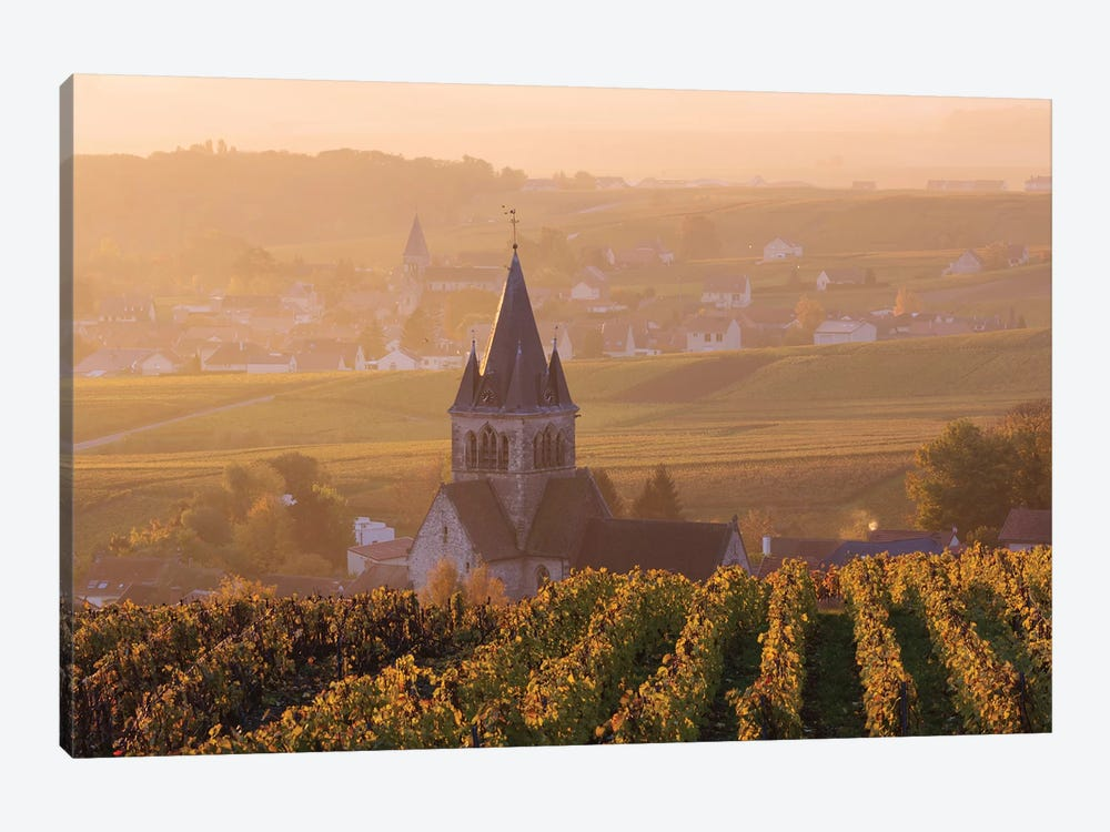 Ville Dommange Vineyards, Champagne, France by Matteo Colombo 1-piece Canvas Artwork