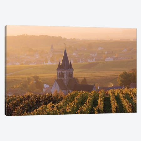 Ville Dommange Vineyards, Champagne, France Canvas Print #TEO176} by Matteo Colombo Canvas Print