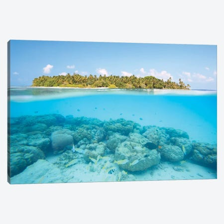 Island And Reef, Maldives Canvas Print #TEO217} by Matteo Colombo Canvas Wall Art