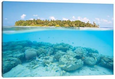 Island And Reef, Maldives Canvas Art Print