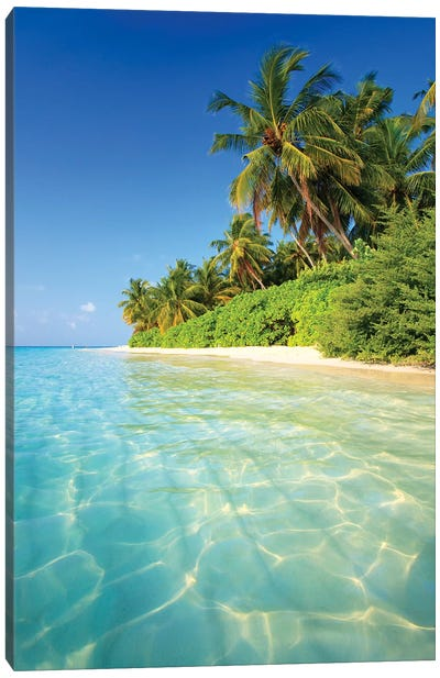 Tropical Beach In The Maldives Canvas Art Print