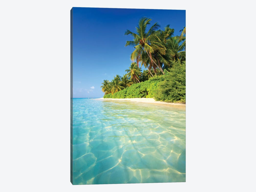 Tropical Beach In The Maldives by Matteo Colombo 1-piece Canvas Wall Art