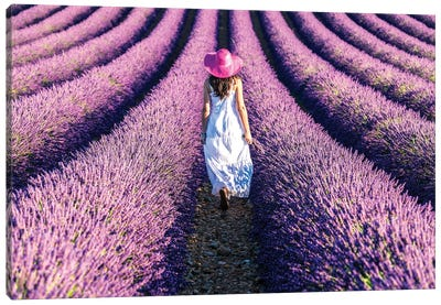 Woman Walking In The Lavender, Provence Canvas Art Print