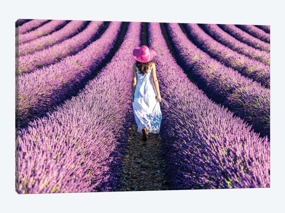 Woman Walking In The Lavender, Provence by Matteo Colombo 1-piece Canvas Art