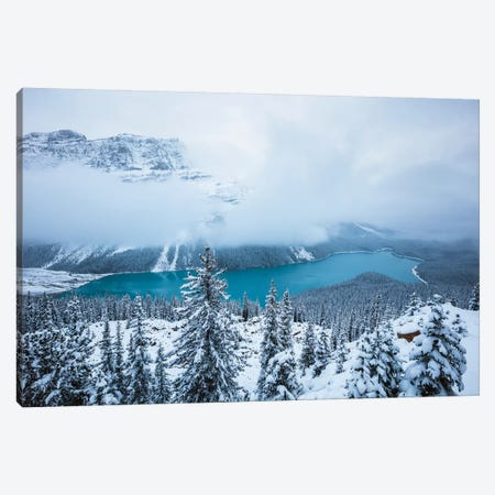 Winter At Peyto Lake Canvas Print #TEO306} by Matteo Colombo Canvas Artwork