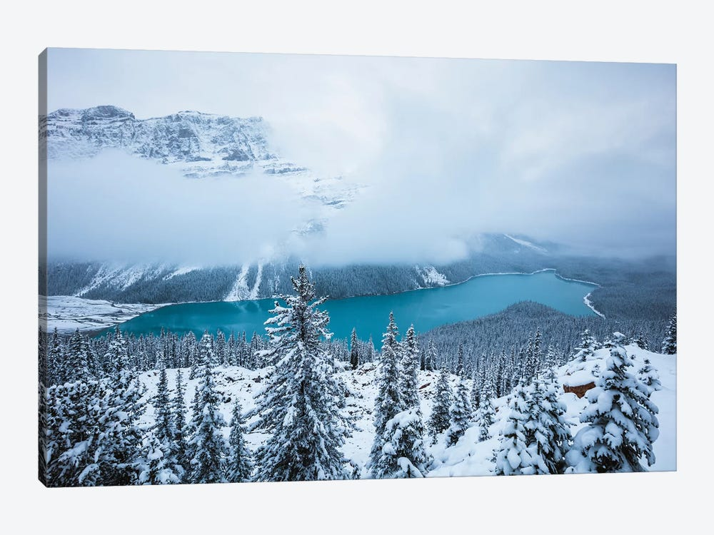Winter At Peyto Lake by Matteo Colombo 1-piece Canvas Wall Art