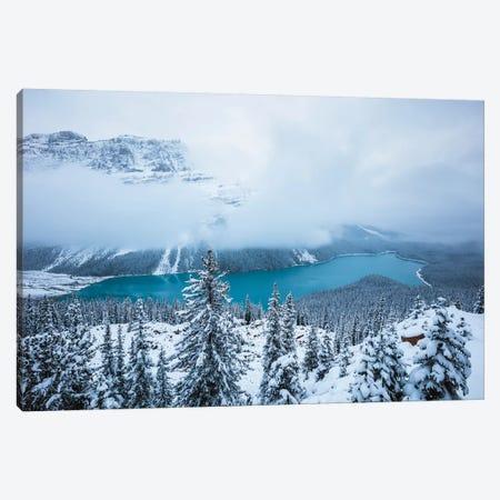 Winter At Peyto Lake Canvas Print #TEO306} by Matteo Colombo Canvas Artwork