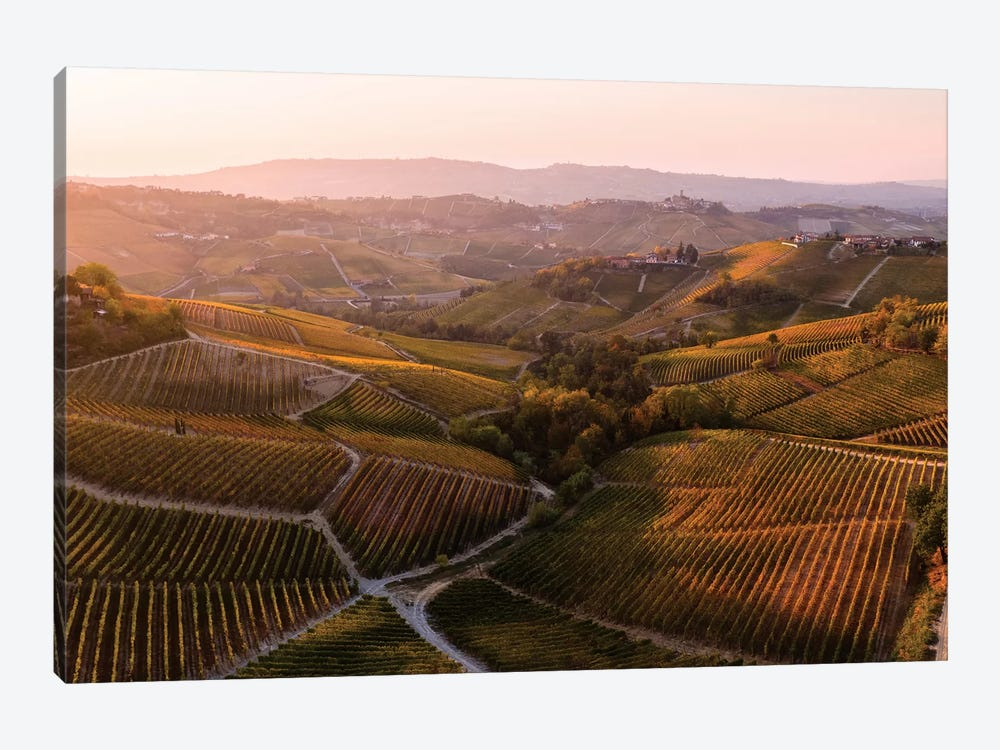 Vineyards In Autumn, Italy by Matteo Colombo 1-piece Canvas Art Print