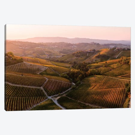 Vineyards In Autumn, Italy Canvas Print #TEO329} by Matteo Colombo Art Print