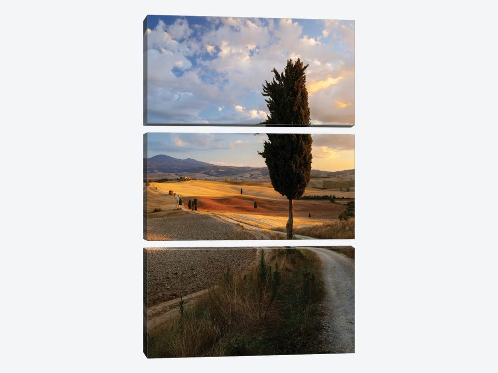 Countryside Sunset, Val d'Orcia, Tuscany, Italy by Matteo Colombo 3-piece Canvas Wall Art