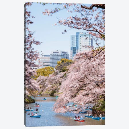 Cherry Blossom In Tokyo, Japan I Canvas Print #TEO356} by Matteo Colombo Canvas Print