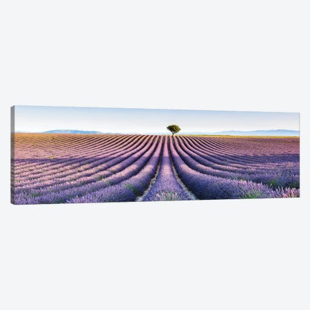 Lavender Field, Provence III Canvas Print #TEO383} by Matteo Colombo Canvas Art Print