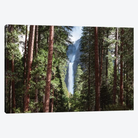 Lower Yosemite Fall And Forest Canvas Print #TEO388} by Matteo Colombo Canvas Print