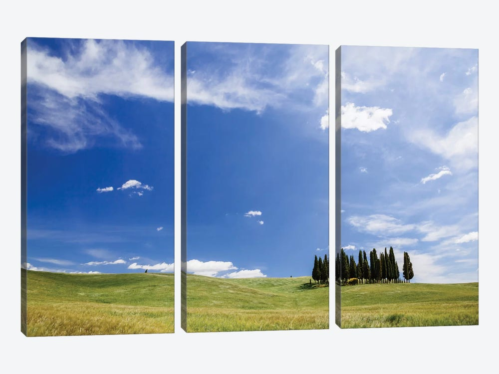Famous Cypress Tree Grove, Val d'Orcia, Tuscany, Italy by Matteo Colombo 3-piece Canvas Artwork