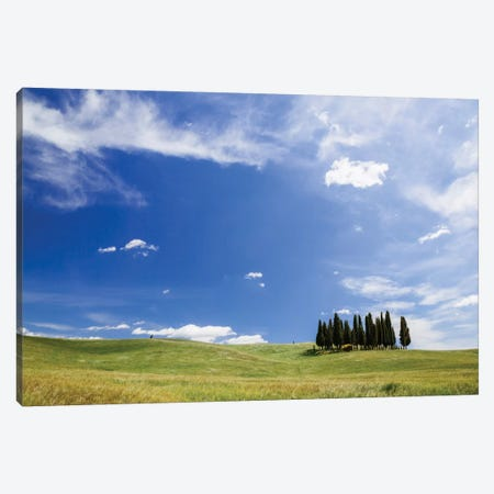 Famous Cypress Tree Grove, Val d'Orcia, Tuscany, Italy Canvas Print #TEO39} by Matteo Colombo Canvas Print