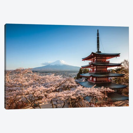 Pagoda And Cherry Trees, Fuji Five Lakes, Japan I Canvas Print #TEO406} by Matteo Colombo Canvas Art Print