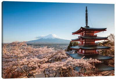 Pagoda And Cherry Trees, Fuji Five Lakes, Japan I Canvas Art Print