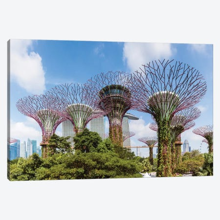 Panoramic Of Supertrees, Gardens By The Bay, Singapore 3-Piece Canvas #TEO411} by Matteo Colombo Canvas Print