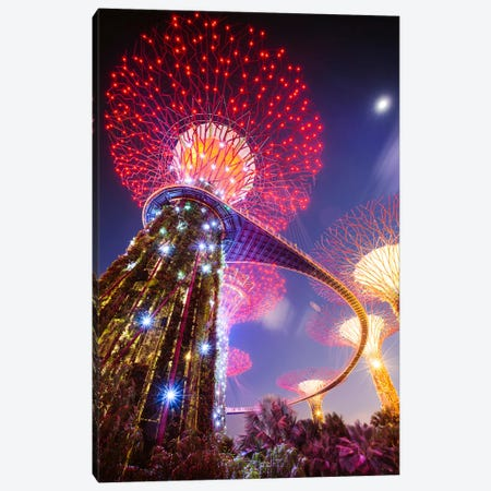 Supertree At Night, Gardens By The Bay, Singapore Canvas Print #TEO431} by Matteo Colombo Canvas Print