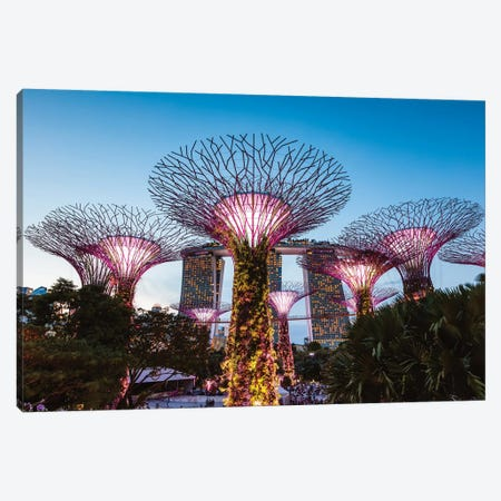 Supertree Grove At Night, Gardens By The Bay, Singapore Canvas Print #TEO432} by Matteo Colombo Canvas Art Print