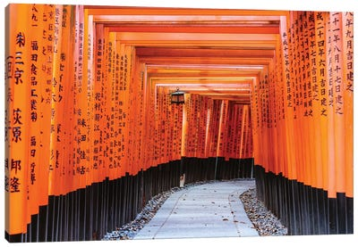 Torii Gates, Fushimi Inari Shrine, Kyoto, Japan I Canvas Art Print