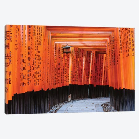 Torii Gates, Fushimi Inari Shrine, Kyoto, Japan II Canvas Print #TEO446} by Matteo Colombo Canvas Art Print