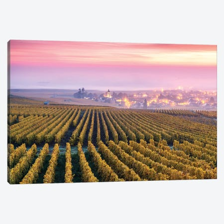 Vineyards In Autumn, Champagne, France Canvas Print #TEO454} by Matteo Colombo Canvas Wall Art