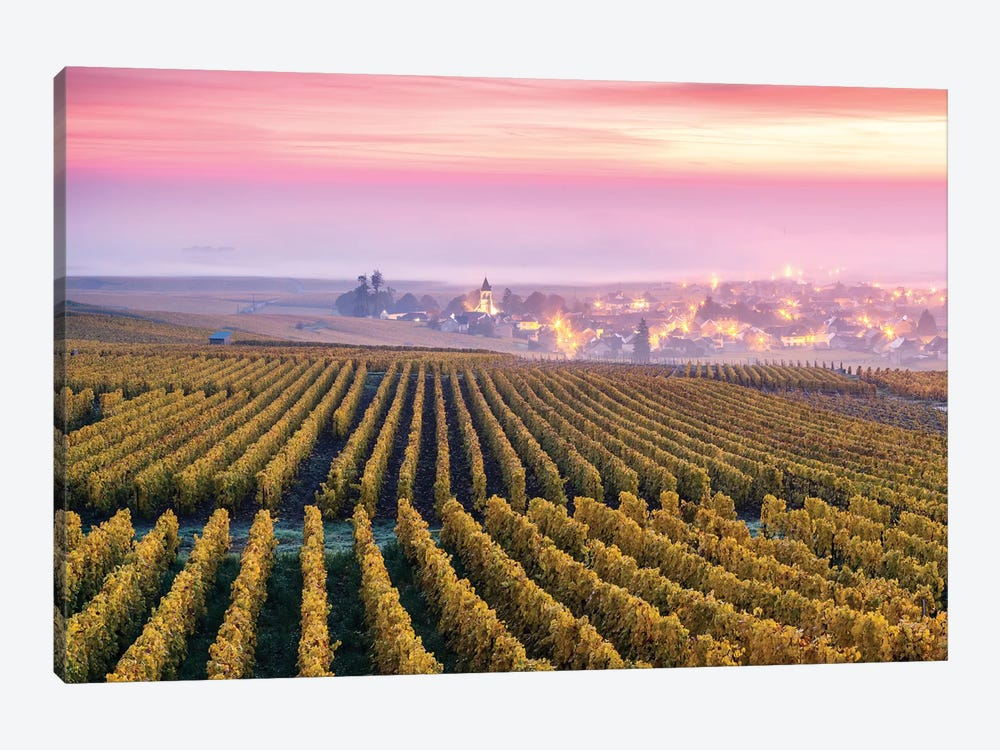 Vineyards In Autumn, Champagne, France by Matteo Colombo 1-piece Canvas Art